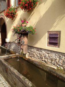 Alsace - love2live