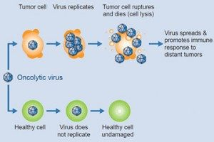 Rigvir Cancer
