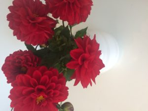 Blomster - love2live