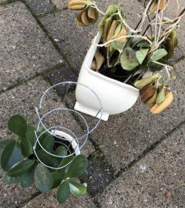 Nye planter - diy - love2live