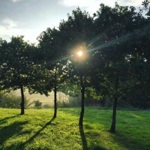 Godmorgen - love2live - husk at sig godmorgen - Juice - Kristina Sindberg - influencer