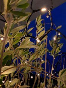 Skab lys i en mørk tid - Love2Live - Kristina Sindberg - livsstilblog - influencer - lyskæder